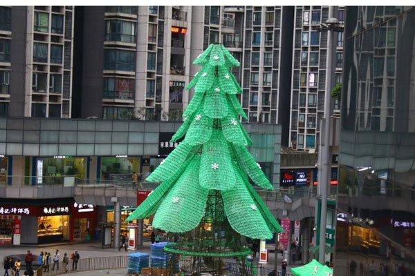 China_Tree