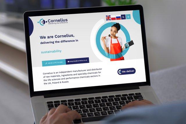Corneluis website laptop med.jpg